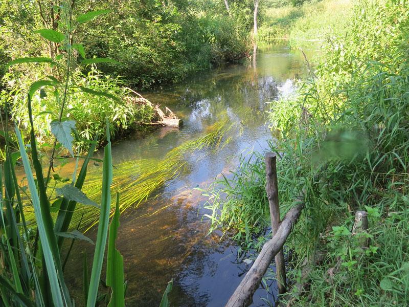 река у источника