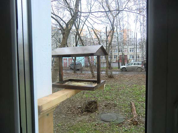 кормушка на окне