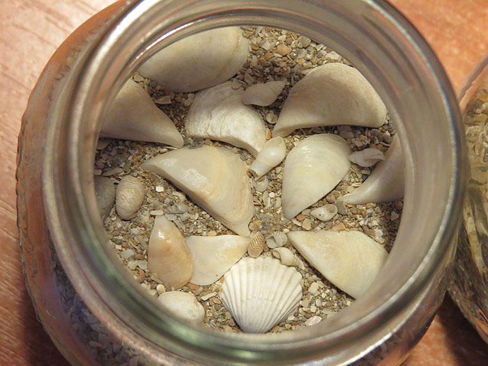 песок Каспия 6