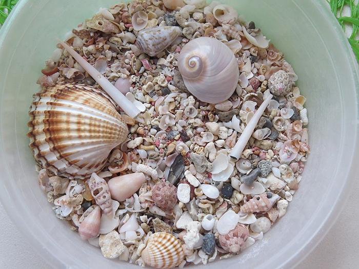 песок элафониси