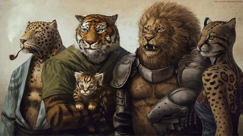 Команда-кошачьих