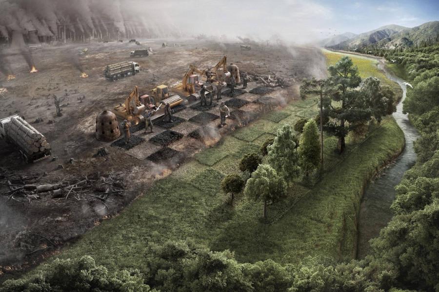 Экологи против строителей