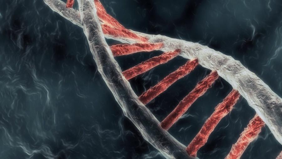 Год генетических экспериментов