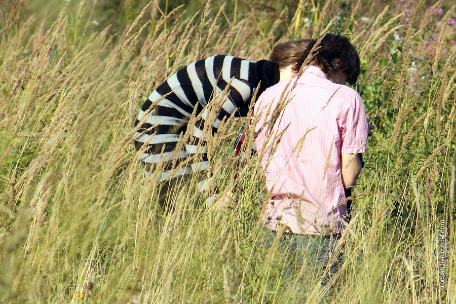 Молодая парочка в траве