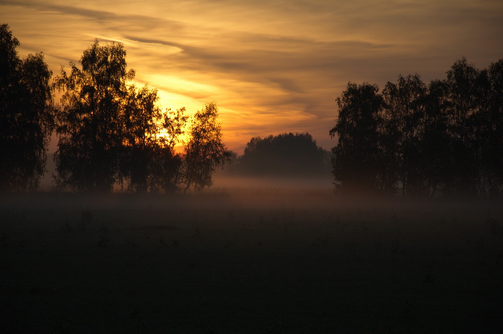 Восход2_1000