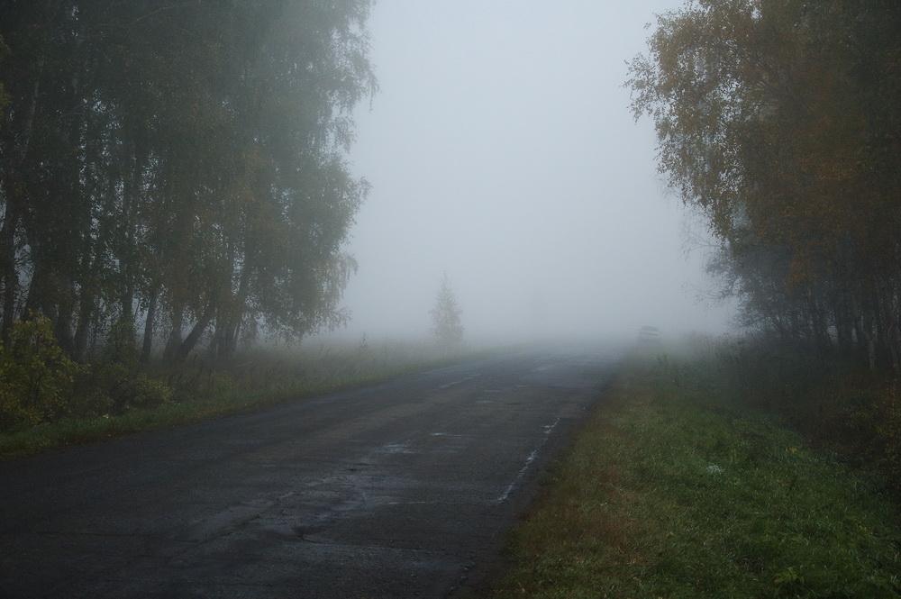 Дорога_1000