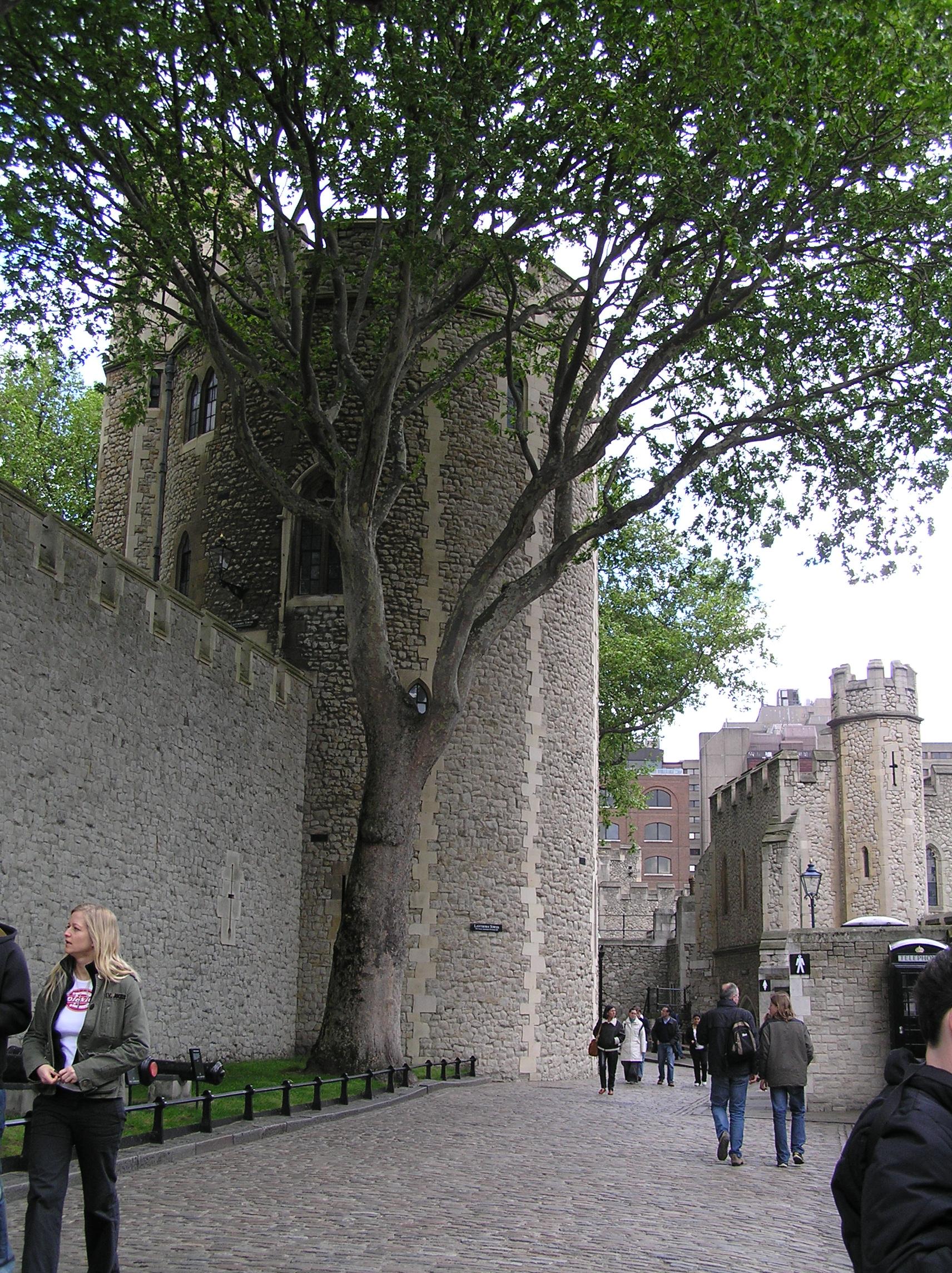 Слева круглая - это Фонарная башня