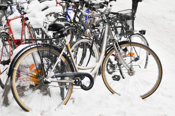 Finally_snow_arrives_in_Stockholm-4