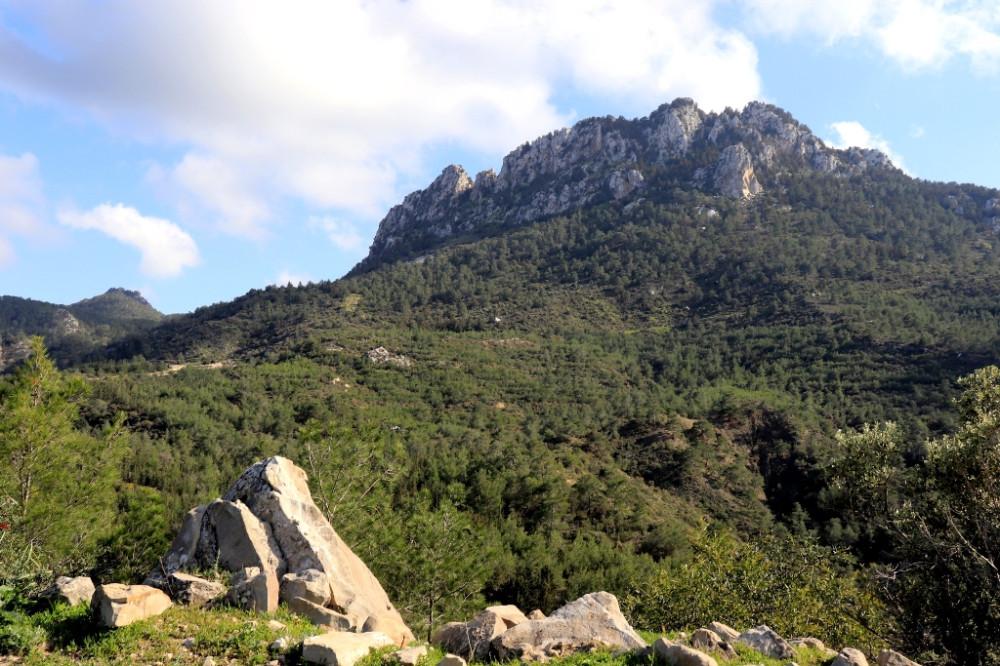 Жирный в горы пойдет или зачем фромноссайпрус пишет муйню IMG_8521