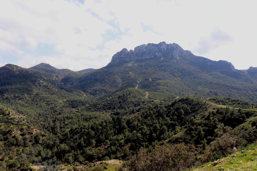 Жирный в горы пойдет или зачем фромноссайпрус пишет муйню IMG_8485