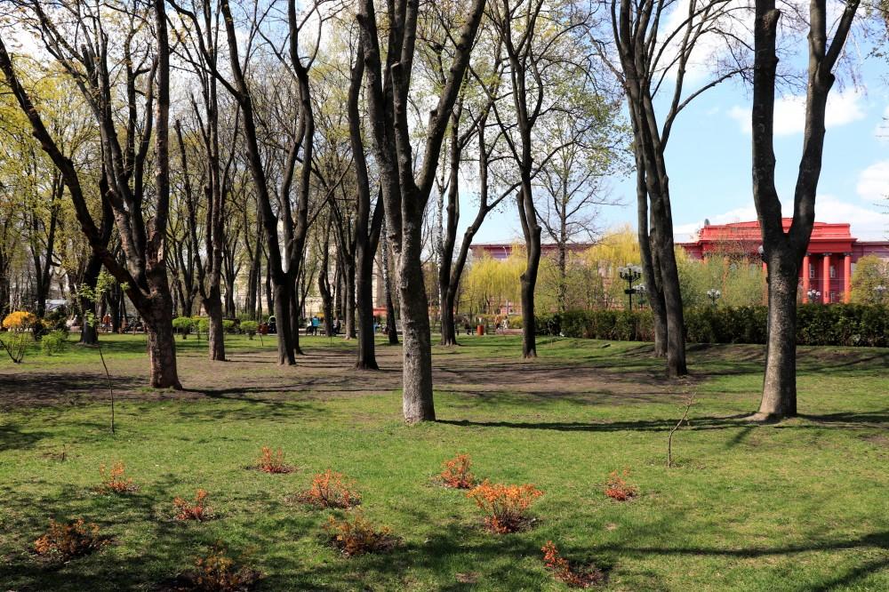 Вербное, или как блогер фромноссайпрус 12 км по Киеву проскакал IMG_0464