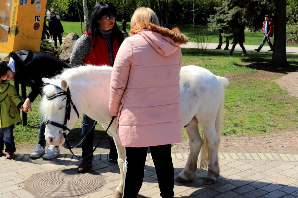 Вербное, или как блогер фромноссайпрус 12 км по Киеву проскакал IMG_0458
