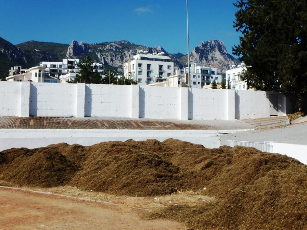 Хотите, чтобы как на Северном Кипре было P6071379