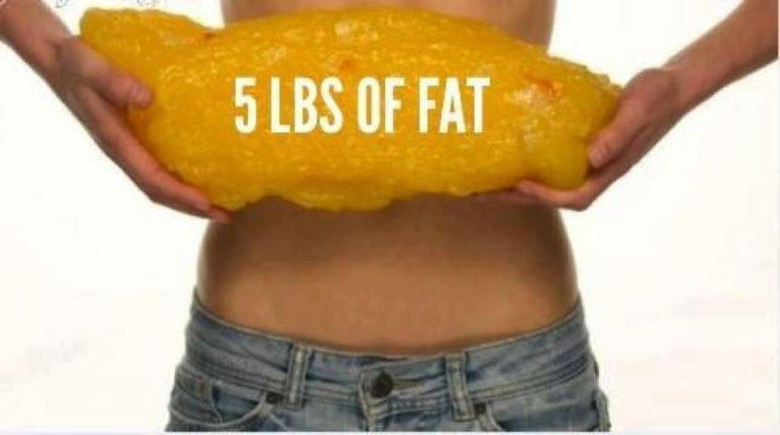 5-lbs-of-fat-perspective