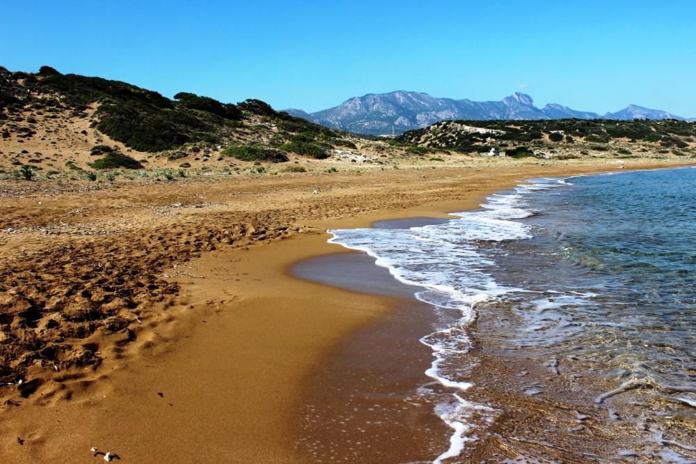 Кто не рискует, тот на Северном Кипре шампанское не пьет IMG_1223