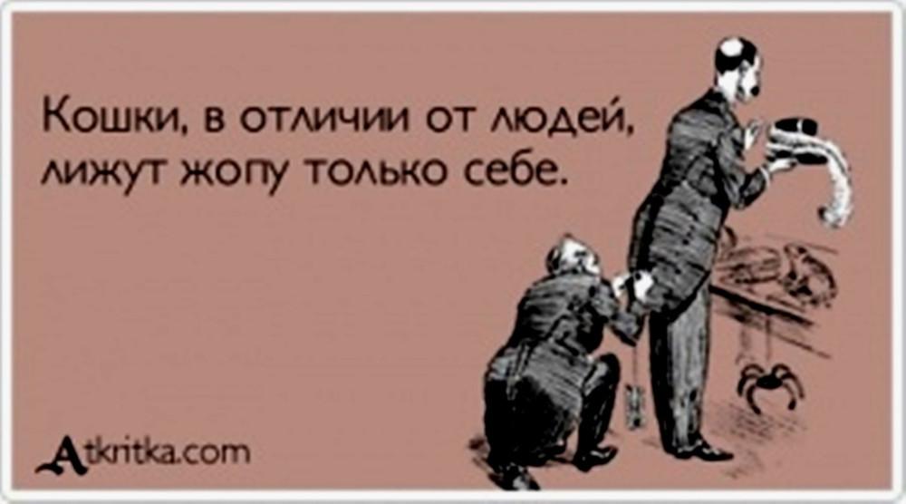 atkritka_1367516076_290_m
