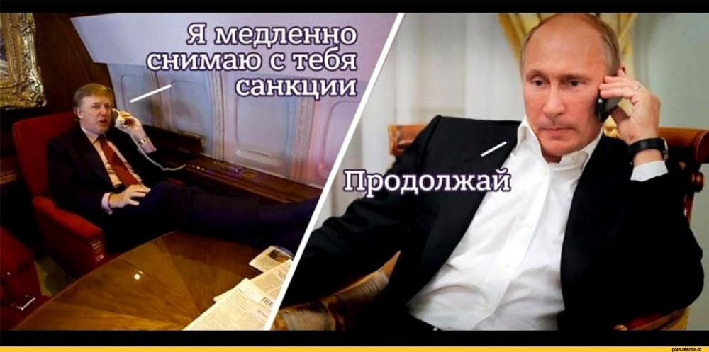 Путин-политика-дональд-трамп-санкции-3631333
