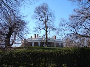 Monticello 010