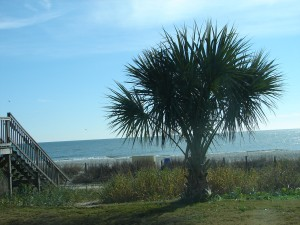 Atlantic at Myrtle Beach