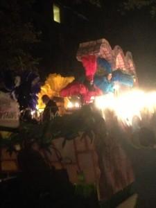 Mardi Gras Parade (4)