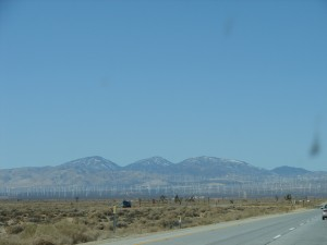 Windmill Farms in Barstow CA (2)