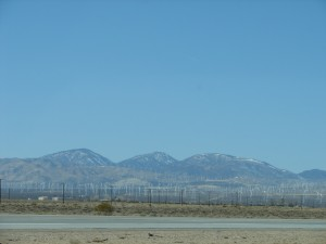 Windmill Farms in Barstow CA (3)