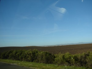 Agriculture in Bakersfield