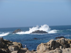 Pacific Ocean in Monterey (1)