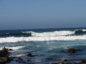 Pacific Ocean in Monterey (2)