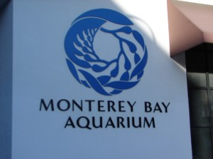 Aquarium Signs (1)