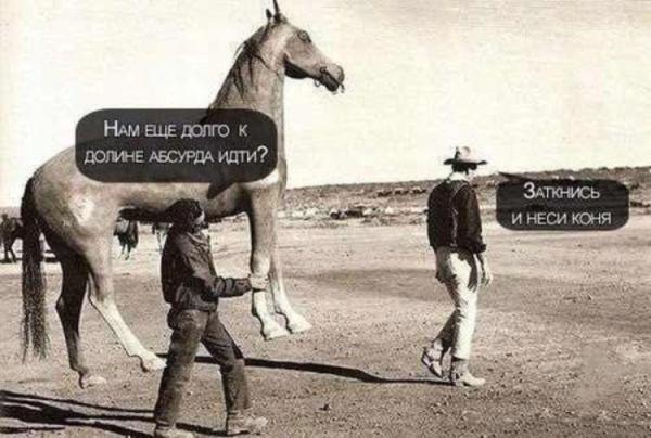 заткнись и неси коня