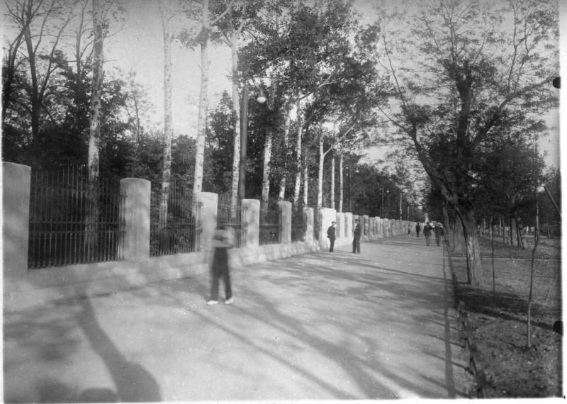 «Облагородили» (ограда по Петровской/Ленина)