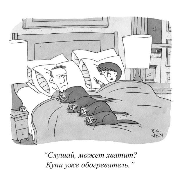 "Журнал ""Нью-Йоркер"""