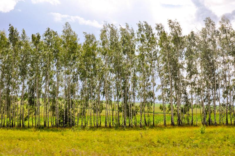 2013-07, Ryazan, oblaka-20