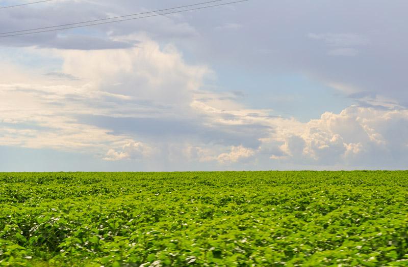 2013-07, Ryazan, oblaka-44