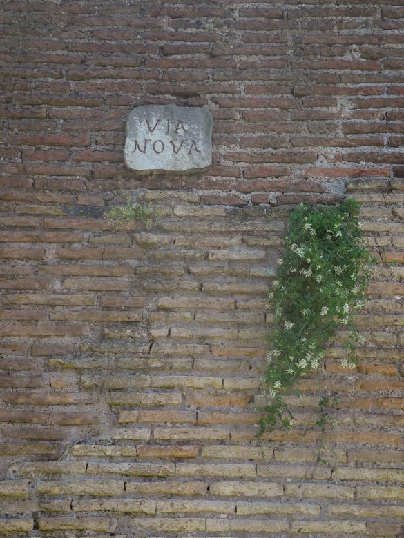 2014-06, Italy, big-344