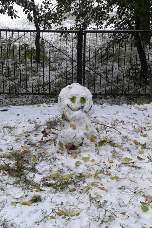 Первый снеговик.jpg