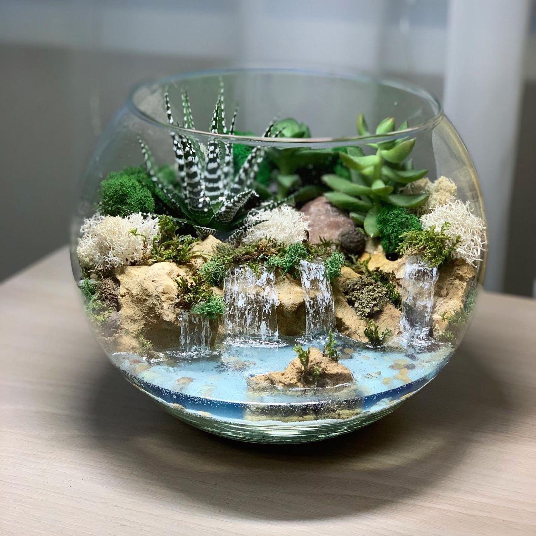 3c54492c5c006459e96c15352clz--tsvety-i-floristika-florarium-vodopady-2.jpg