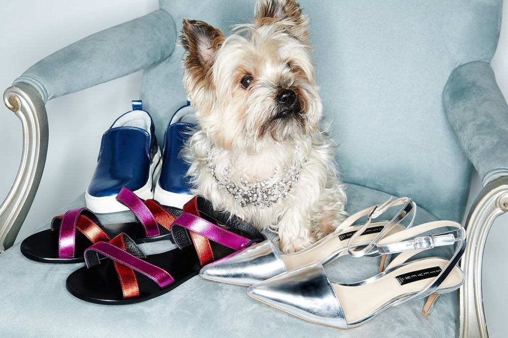 Shopbop-Dogs-Accessories-Shoot