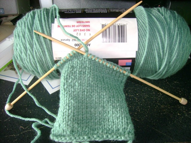 My practice swatch of knit one side - purl the next. ;)