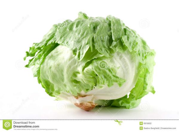 iceberg-lettuce-6916602