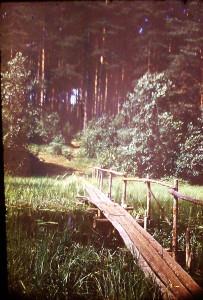 мостки 1971 обдех