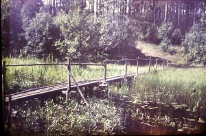 мостки слева 1971