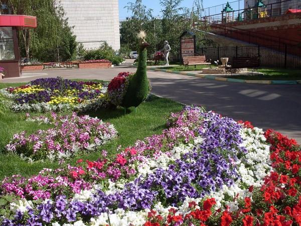 Цветы в УК Уютный Дом Казань