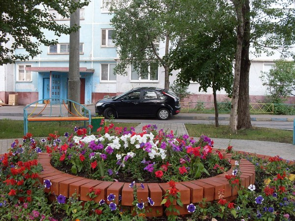 Клумба на ул Адоратского