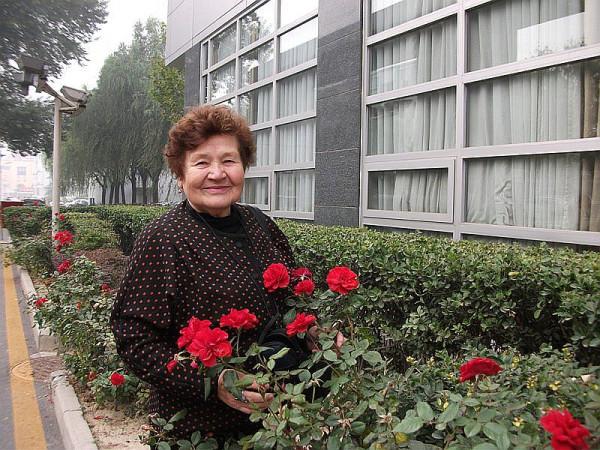 розы у общежития
