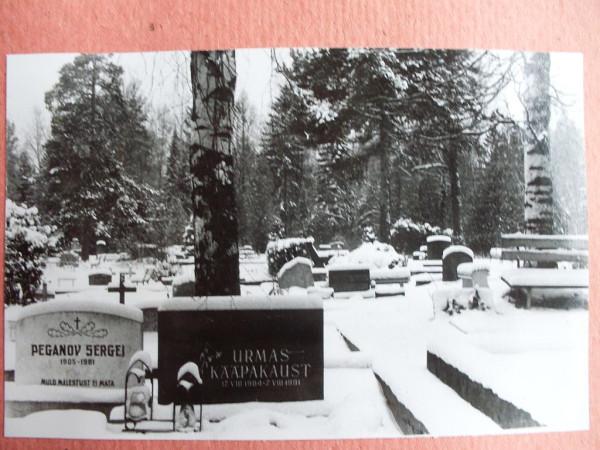 Voru kalmistu 9 talvel