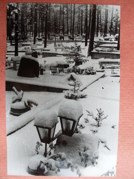 Voru kalmistu 12 talvel