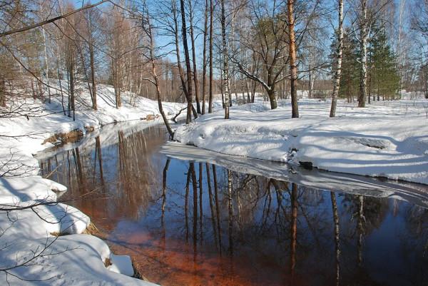 Фото Валерия Толмачева