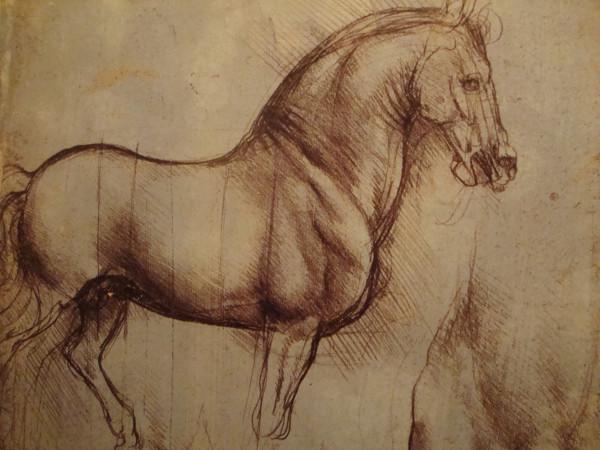 Рисунок Леонардо